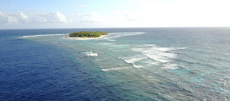 island-conservation-invasive-species-preventing-extinctions-ulithi-atoll-feat