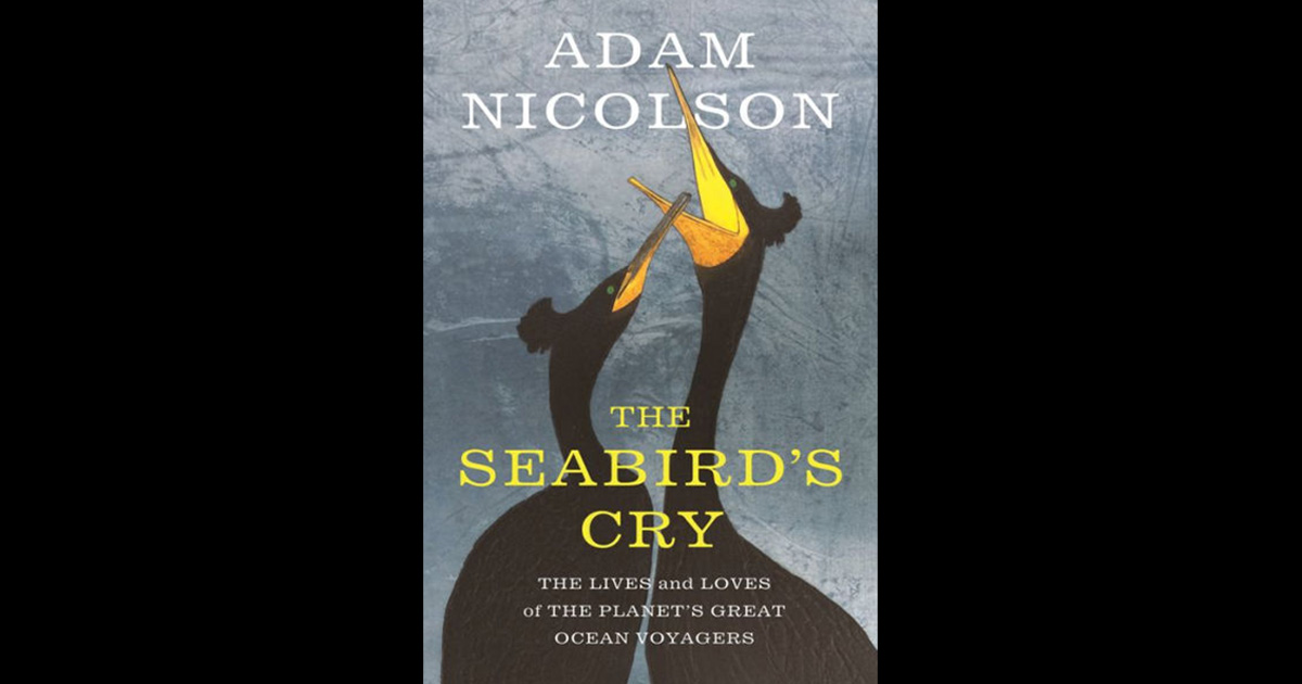 island-conservation-invasive-species-preventing-extinction-seabirds-cry-adam-nicolson-seabird