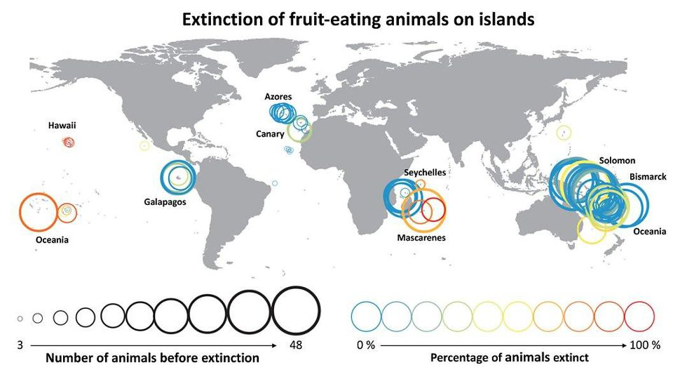 island-conservation-invasive-species-preventing-extinctions-extinction-islands-map