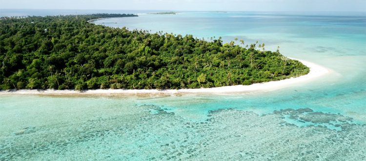 island-conservation-invasive-species-global-island-partnership-member-glispa