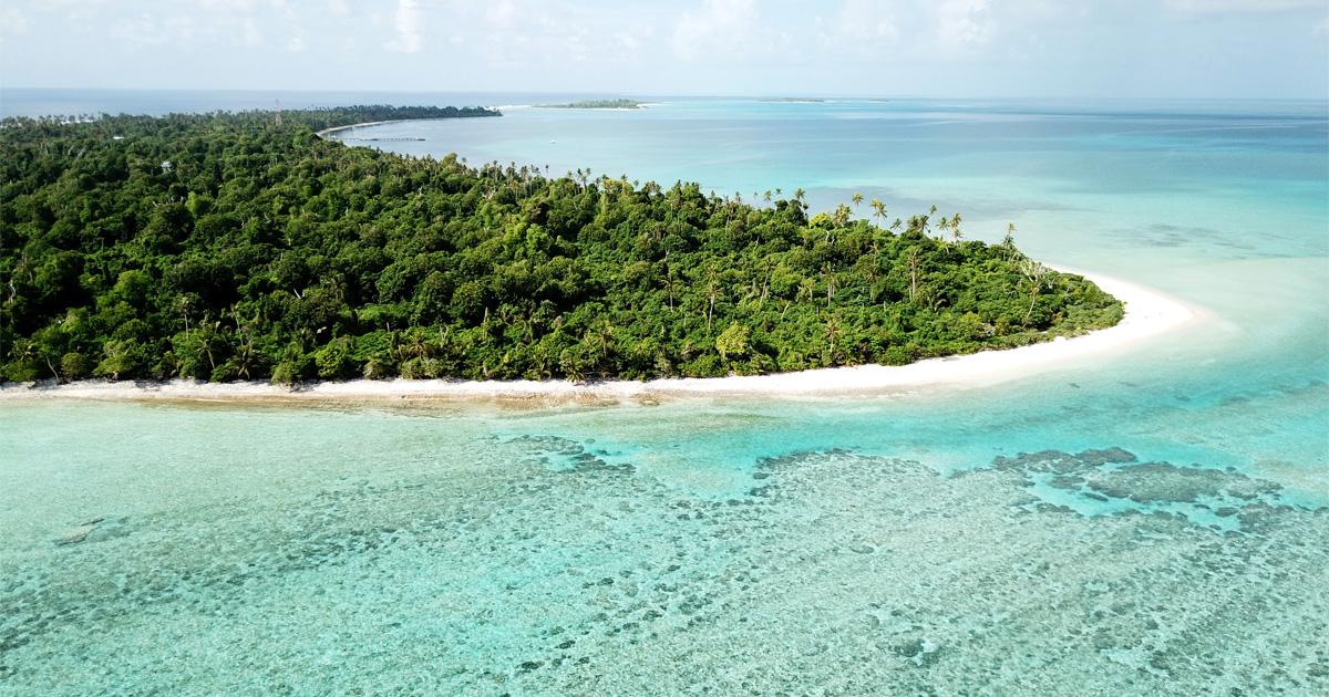 island-conservation-invasive-species-global-island-partnership-member-glispa