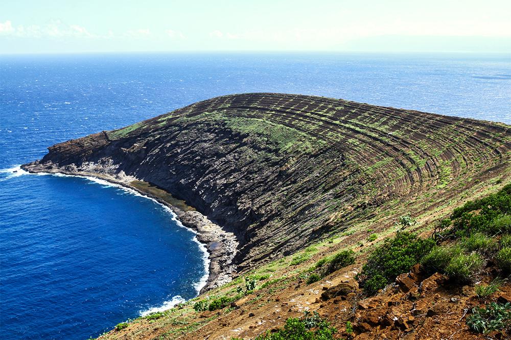 island-conservation-invasive-species-preventing-extinctions-island-climate-change-lehua-island-high-elevation