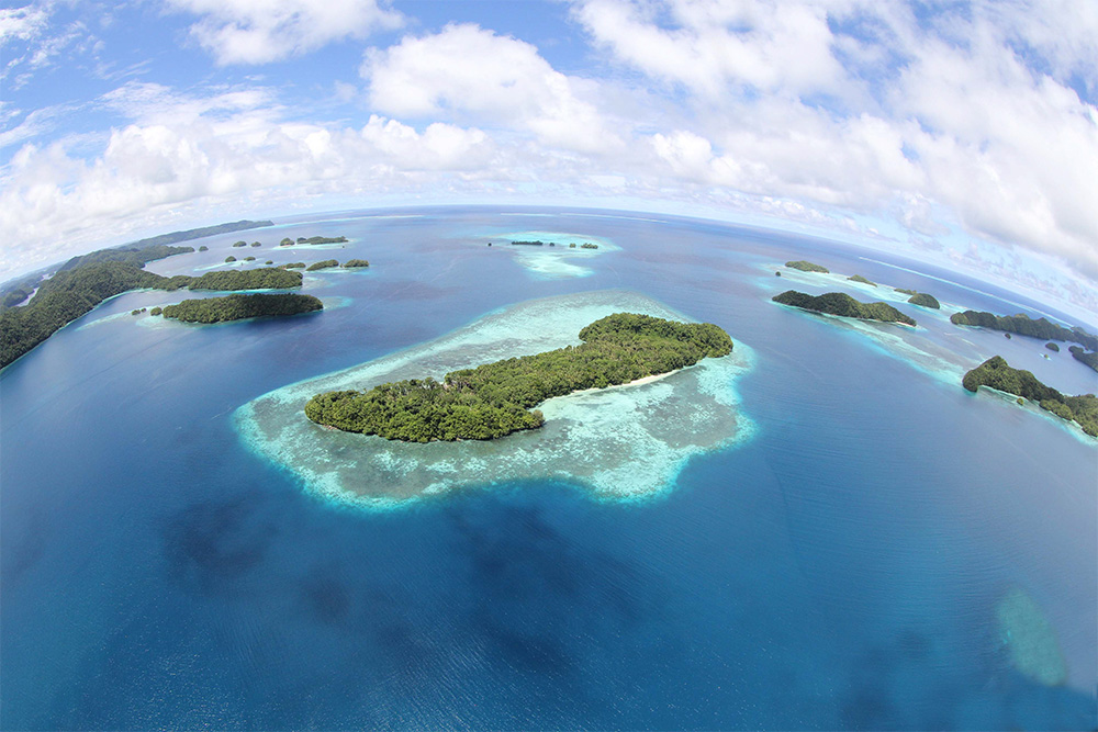 island-conservation-invasive-species-preventing-extinctions-ngeanges-palau-rock-islands