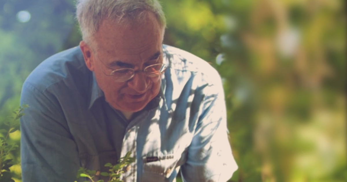 island-conservation-invasive-species-preventing-extinctions-daniel-simberloff-board-emeritus