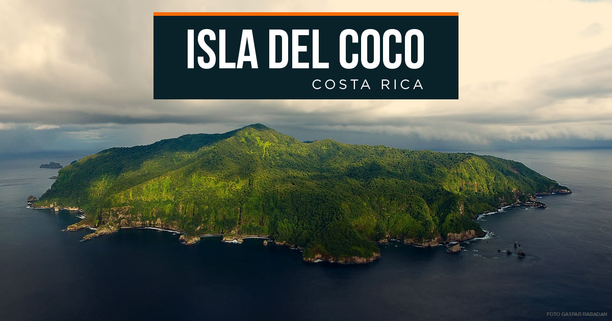 Island-conservation-preventing-extinctions-coco-islands-costa-rica-parque-nacional-isla-del-coco-logos-socios-costa-rica-feat