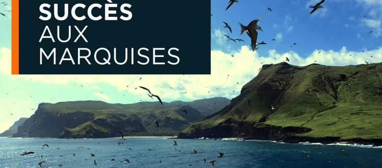 Island-conservation-preventing-extinctions-marquesas-french-polynesia-fr