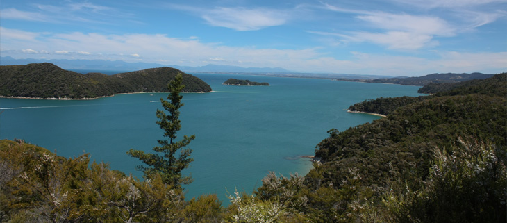 predator-free-new-zealand-island-conservation-preventing-extinctions-abel-tasman-feat