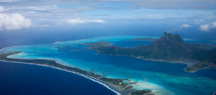 island-conservation-preventing-extinction-shrinking-islands-Feat.