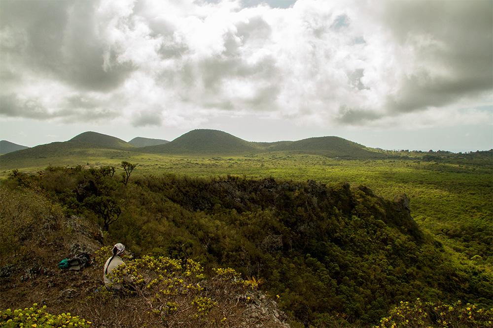 island-conservation-invasive-species-preventing-extinctions-floreana-island-169-islands-nick-holmes