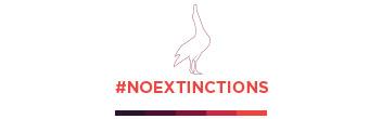 island conservation noextinctions albatross frans lanting