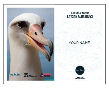 island conservation midway albatross adopt