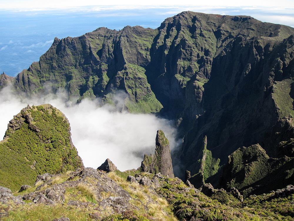 island-conservation-invasive-species-preventing-extinctions-alejandro-selkrik-island-valley