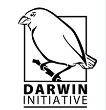 island-conservation-invasive-species-preventing-extinctions-ulithi-project-support-darwin-initiative