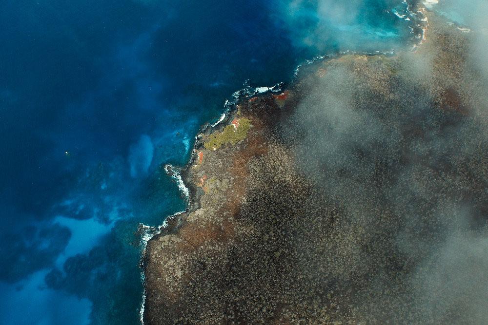 island-conservation-invasive-species-preventing-extinctions-floreana-Island
