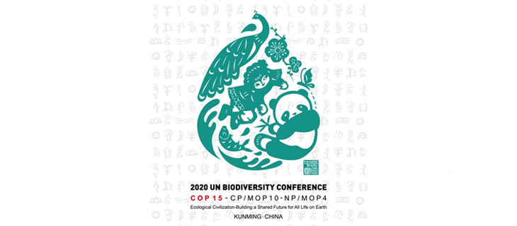 island-conservation-invasive-species-conference-parties-convention-biological-diversity-2020-feat