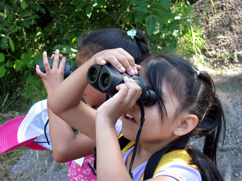 island-conservation-preventing-extinctions-invasaive-species-global-big-day-children-birding