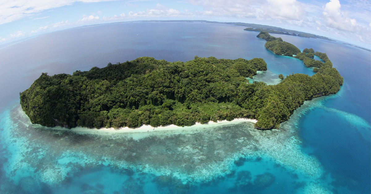island-conservation-invasive-species-preventing-extinctions-ulong-beach-palau-rock-islands-ron-leidich
